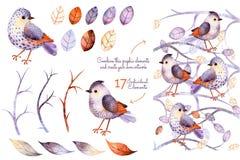 Collection d'aquarelle avec des oiseaux Photographie stock libre de droits
