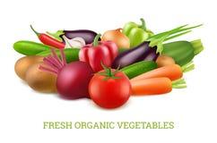 Collection 3d de légumes Images réalistes de vegan de nourriture de vecteur sain organique de nutrition illustration stock