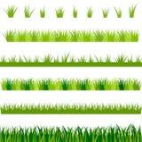 Collection d'herbe verte, illustration Photo libre de droits