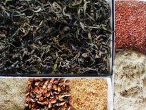 Collection d'herbes, de baies médicinales et de graines en gros plan images libres de droits
