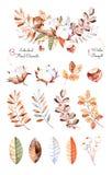 Collection d'hiver avec 13 éléments peints à la main d'aquarelle + 1 bouquet d'hiver Photo libre de droits