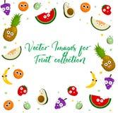 Collection d'icône de fruit pour tout le concepteur illustration de vecteur