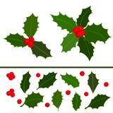 Collection d'icône de baies de houx de Noël Éléments tirés par la main Illustration de vecteur illustration de vecteur