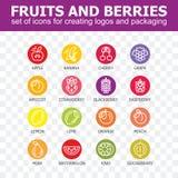 Collection d'icône de fruit - illustration de vecteur Image stock