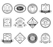 Collection d'icônes de labels de légumes fruits Photographie stock