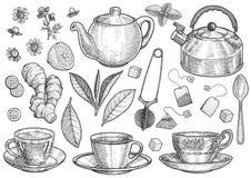 Collection d'illustration de thé, dessin, gravure, encre, schéma, vecteur illustration de vecteur