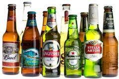Collection de bières blondes sur le blanc Image stock
