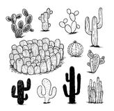Collection de cactus, illustration de vecteur Photos libres de droits