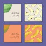 Collection de calibre de cartes de visite professionnelle de visite de fruit illustration stock