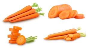 Collection de carottes propres fraîches de tiges, tas, tranche d'anneau photo libre de droits