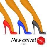 Collection de chaussures de mode, pompes, talons illustration libre de droits