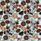 Collection de chien Images stock