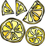 Collection de citrons, d'isolement sur le fond blanc, illustration de vecteur de style de griffonnage Image libre de droits
