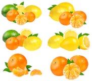 Collection de citrus& x28 ; chaux, mandarines, lemon& x29 ; d'isolement sur le blanc Photos libres de droits