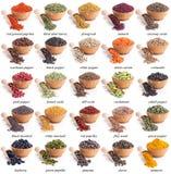 Collection de différentes épices et herbes Photos libres de droits