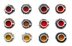 Collection de différents thés dans des tasses Photos stock