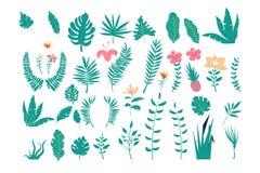 Collection de feuilles tropicales de diverses usines d'isolement sur le fond blanc Ensemble d'éléments naturels de conception illustration de vecteur
