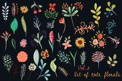 Collection de floral mignon de vecteur dans le style simple rustique dessus profondément Photo stock