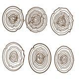 Collection de fond d'arbre-anneaux Images libres de droits