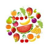 Collection de fruit Photo stock