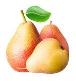 Collection de fruit de trois poires avec la feuille d'isolement Image stock