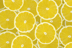 Collection de fruits de citron sur le blanc Photos stock