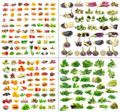 Collection de fruits et légumes d'isolement Photos libres de droits