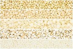 Collection de grain images stock