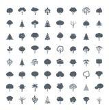 Collection de Grey Trees Photos libres de droits