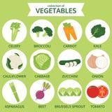 Collection de légumes, illustration de vecteur de nourriture, ensemble d'icône illustration stock