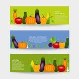 Collection de légumes sains réalistes Images stock
