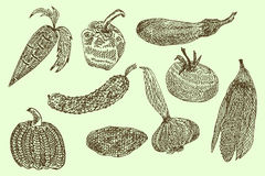 Collection de légumes tirés par la main, illustration de vecteur dans le style de vintage illustration stock