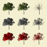 collection de l'arbre 3d Images stock