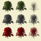 collection de l'arbre 3d Image stock