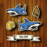Collection de mer Illustration tirée par la main dedans Photo stock