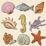 Collection de mer. Illustration tirée par la main originale Image libre de droits