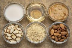 Collection de nourritures superbes d'amande photographie stock