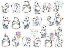 Collection de pandas d'aquarelle, tiré par la main d'isolement sur un fond blanc illustration de vecteur