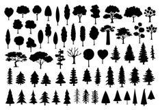 Collection de parc différent, forêt, silhouettes d'arbres de bande dessinée de conifère dans la couleur noire illustration stock