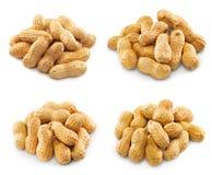 Collection de pistaches photos stock