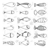 Collection de poissons sur le fond blanc Style tiré par la main Image stock