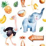 Collection de safari avec l'autruche mignonne, éléphant, meerkat illustration stock