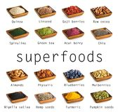 Collection de Superfoods Photo stock