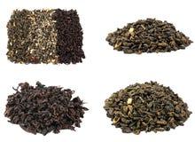 Collection de thé sur le fond blanc Image libre de droits