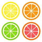 Collection de tranches citron, orange, pamplemousse et chaux sur le fond blanc illustration libre de droits