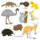 Collection de vecteur de bande dessinée d'animaux sauvages d'Australie illustration libre de droits