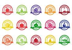 Collection de vecteur : icônes de fruit Photographie stock libre de droits