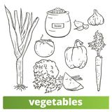 Collection de vecteur de l'illustration tirée par la main de clipart de légumes d'isolement sur le fond blanc illustration stock