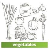 Collection de vecteur de l'illustration tirée par la main de clipart de légumes d'isolement sur le fond blanc illustration stock