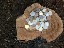 collection de vieilles pièces de monnaie sur le vieux tronçon d'arbre images stock
